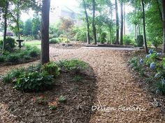 This is exactly what I want to do with our wooded area on our property!!!