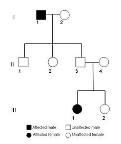 Quiz on dna fingerprinting or dna profiling biology quizzes online genetics science project showing recessive pedigree ccuart Choice Image