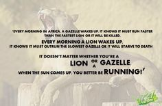 It doesn't matter whether you're a #lion or a #gazelle, when the #sun comes up you better be #running! #workhard #nevergiveup, combine #721nutrition's #organic #superfoods #protein #shake with your #healthy #lifestyle!