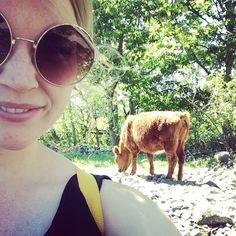 36 likerklikk, 0 kommentarer – Camilla (@siljecamillav) på Instagram Sunglasses, Instagram, Fashion, Moda, Fashion Styles, Sunnies, Shades, Fashion Illustrations, Eyeglasses