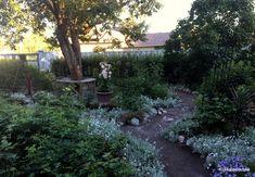 Hopsin, Gaudi, Cornwall, Lifestyle, Plants, Summer, Summer Time, Plant, Antoni Gaudi