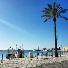 Molfetta #ridieassapori Puglia