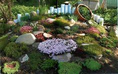 148 Mejores Imagenes De Jardin Con Tronco Seco Trunks Garden