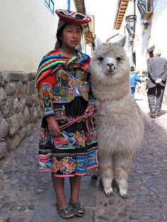 Cuzco (Perú). I hope I get to see a big furry llama like this.