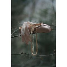 Tumblr ballet of the beautiful via Polyvore
