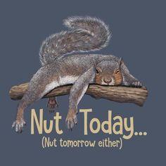 7167acbd7 Squirrel T-shirt Nut Today Cotton S M L XL XXL NWT NEW Blue Nut Tomorrow  Either #Gildan #CrewNeck