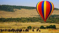 Ballooning over the Masai Mara from Governors Camp Air Ballon, Luxury Travel, Safari, Travel Destinations, Ocean, Adventure, Hot, Kenya, Travel