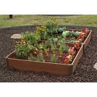 With a renewed focus on healthy eating and living, more people are turning to natural and traditional gardening methods in their own backyards. This essentially means gardening without the use of a…