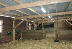 Tietoa hevosten kylmänkestävyydestä ja hoidosta pihatossa