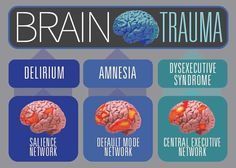This shows how different areas of the brain are affected by tbi.