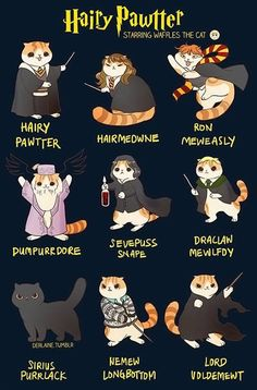 Waffles the Cat: Harry Potter. Do I put this on my Harry Potter board, cat board or funny board? Harry Potter World, Memes Do Harry Potter, Arte Do Harry Potter, Cute Harry Potter, Harry Potter Drawings, Harry Potter Pictures, Harry Potter Fandom, Harry Potter Characters, Pusheen Harry Potter