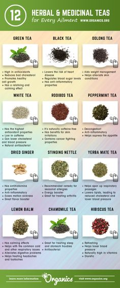 12 Herbal and Medicinal Teas to Improve Your Health