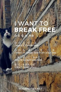 I Want to Break Free – Queen #musicnotes #sheetmusic #noobnotes #iwanttobreakfree