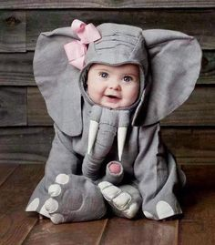 Baby elephant costume . Can it get any cuter than this ?