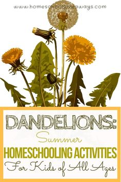 Dandelions: Summer Homeschooling Activities for Kids of All Ages # homestead act activities for kids Dandelions: Summer Homeschooling Activities for Kids - Homeschool Giveaways Nature Activities, Summer Activities, Youth Activities, Preschool Printables, Montessori Preschool, Free Preschool, Dandelion Art, Giveaways, Theme Nature