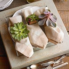 Succulent Napkin Rings  Bring the outdoors into your home with our natural fall-inspired napkin rings. Simply cut various succulents with a short stem, poke florist's wire into the stem, and wrap with florist's tape to secure. Push the wrapped wire through a hole in the center of a burlap strip, loop the wire so it can hold the napkin, and hot-glue the burlap to cover the wire.