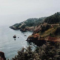 delta-breezes: Rachel Claire | @fieldnotes_