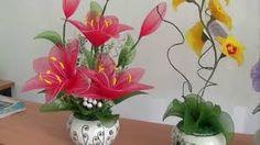 Hasil gambar untuk hoa voan