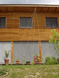 h ngender bambus 39 green twist 39 garden ideas pinterest. Black Bedroom Furniture Sets. Home Design Ideas