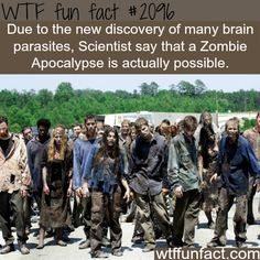 This is why zombie movies terrify me to no end... I'm always afraid if it actually happened in real life.