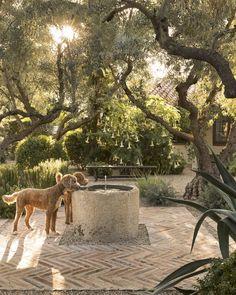 Backyard Patio, Backyard Landscaping, Landscaping Ideas, Backyard Planters, Farmhouse Landscaping, Backyard Projects, Modern Landscaping, Backyard Ideas, Diy Projects