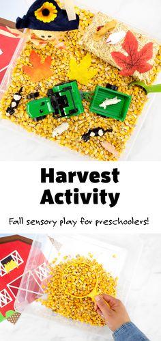 Harvest Activity