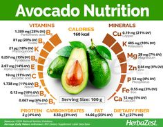 Avocado is a popular herb, but it's also packed with medicinal benefits. Learn more about avocado, from avocado recipes to growing it and much more. Tomato Nutrition, Nutrition Tips, Health And Nutrition, Health Tips, Nutrition Activities, Avocado Nutrition Facts, Carrots Nutrition, Nutrition Tracker, Dieting Foods