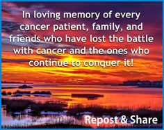 In loving memory of every cancer patient, family, and friends who have lost the battle with cancer and the ones who continue to conquer it.