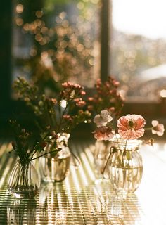 Very Beautiful Film Photography by Junghyun Choi Deco Floral, Arte Floral, Color Durazno, Light And Shadow, Film Photography, Street Photography, Landscape Photography, Nature Photography, Fashion Photography
