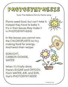 FREE photosynthesis song printable and other activities for teaching photosynthesis to young learners.: