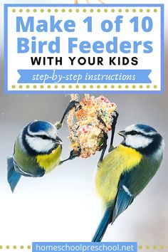 Discover a variety of simple bird feeders for preschoolers to make and hang in the trees. They'll love watching the birds flock to the yard. #birdfeeders #diybirdfeeders #makebirdfeeders #homeschoolprek Preschool Arts And Crafts, Preschool Lessons, Easy Bird, Backyard Trees, Flock Of Birds, Toddler Art, Craft Projects For Kids, Parents As Teachers, In The Tree