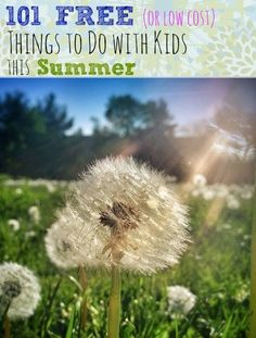 101 Free (or Low Cost) Things To Do with Kids this Summer - some really great and doable ideas divided by categories (places to go, outdoor, indoor)