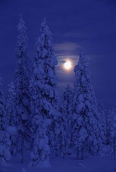 Darkness and Moon  Kuusamo, Finland