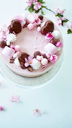 Geisha Chocolate Raspberry Cheesecake – The Most Delicious Cake of the Summer – Ko … – Pastry World Köstliche Desserts, Dessert Recipes, Dessert Original, Chocolate Raspberry Cheesecake, Savoury Cake, Pretty Cakes, Let Them Eat Cake, Yummy Cakes, No Bake Cake