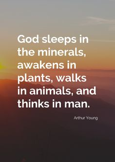 """God sleeps in the minerals, awakens in plants, walks in animals, and thinks in man."" by Arthur Young printed on high quality matte paper available in different sizes"