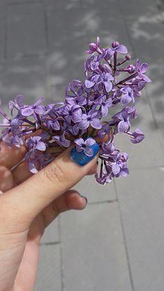 #Focus on purple