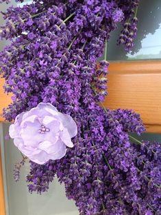 (Source: via mossy-trees-petals-and-bees) Lavender Cottage, Lavender Tea, French Lavender, Lavender Fields, Lavender Flowers, Purple Flowers, Beautiful Flowers, Purple Love, All Things Purple