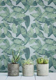 9 tropical murals wallpaper