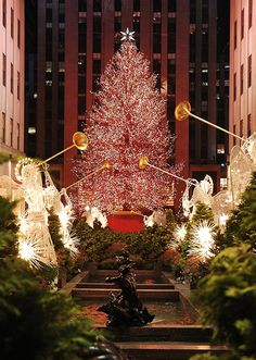❇ Rockefeller Plaza, NYC during Christmas ❇ One of my favorite places to go when I am home for the holidays. <3