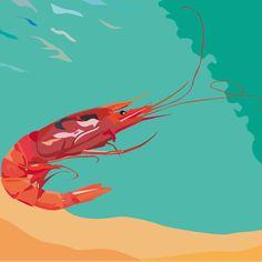 Gambero. Adobe Illustrator. Tecnica livelli. Autore Francesco Bustreo 3Al