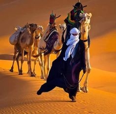 The Tuareg are intimately connected Desert Colors, Arabian Beauty, Desert Life, Beauty Around The World, Native Art, North Africa, Nature Pictures, Beautiful Horses, Deserts