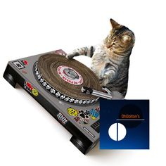 Cat DJ Turntables and Laptops now available at OhDaltons.com | #DJ #turntable #laptop #cattoys #catsofinstagram #kittensofinstagram #funnypic #funnypics #funnycat #funnycats #funnykitty #funnykitten #coolcat #funnypets via @RiplApp