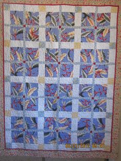 Quilt by rrhaigh from the quiltingboard.com  I like the window pane look of this quilt.