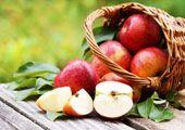 Material zum Thema Apfel, auf Link klicken