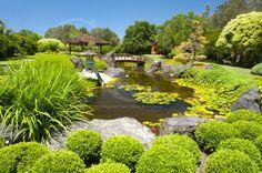 Gosford Regional Art Gallery and Japanese Gardens. East Gosford  NSW.