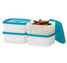 Tupperware FreezeIt set of 4 Small Deep Squares with Tropical Water seals *** Click image for more details.