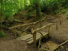 natuurroute in Berg en Dal: de spectaculairste wandeling in Nederland Day Hike, Day Trip, Places Around The World, Travel Around The World, Old Bridges, Hiking Europe, Weekender, Walkabout, Hiking Tips