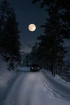 I love snowy nights when the moon gives you light to continue your adventure.