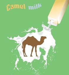 Benefits of Camel Milk
