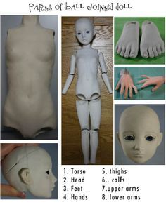 parts_bjd http://kathyoconnellsart.wordpress.com/2011/07/22/porcelain-ball-jointed-dolls/